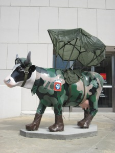 Cow--Military 045
