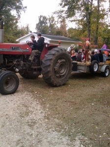 Hayride on the Go. Copyright 2012. Linda Andersen