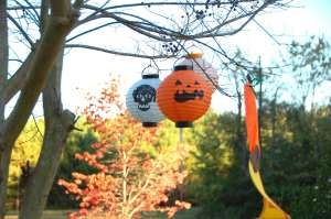 Halloween Paper Lanterns in a tree. Copyright 2015 Linda Martin Andersen