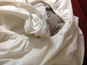 Sock in a Sheet by Linda Martin Andersen. Copyright 2016.